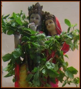 Lord Krishna marble idol decorated with Tulsi.